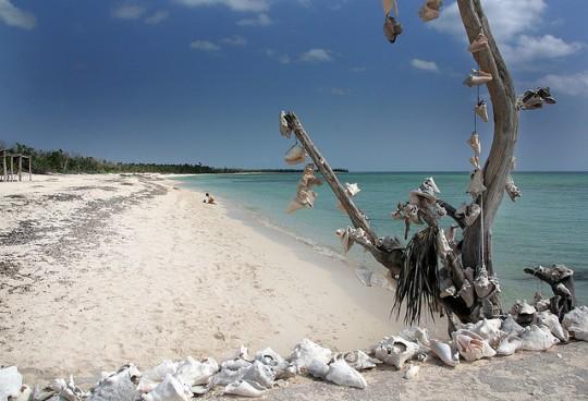 Playa de Palancar