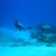 Inmersión en Yucab, cozumel