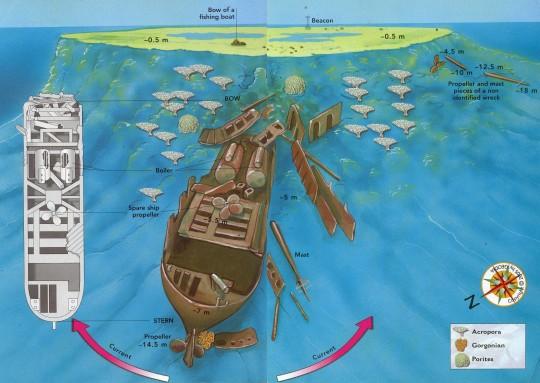 Plano de la inmersión, haz click para ampliar