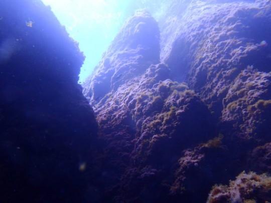 La inmersión transcurre entre pasajes entra grandes rocas sobre fondo arenoso